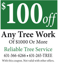 Reliable Tree Service $100 Off Coupon