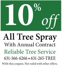 Reliable Tree Service 10% off coupon