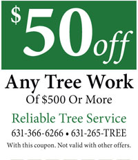 Reliable Tree Service 50 off Coupon